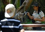 Currumbin Wildlife Sanctuary General Entry Ticket, Gold Coast, AUSTRALIA