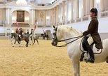 Escola de Equitação Espanhola: Morning Exercise Viewing in Vienna,