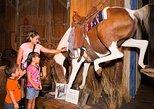 Buckhorn Saloon y Museo Texas Ranger. San Antonio, TX, ESTADOS UNIDOS