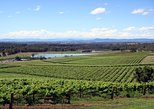 Viagem diurna para degustação de vinho no Vale Hunter, saindo de Sydney,