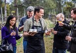 Chef-Led Hunter Valley Gourmet Food and Wine Tour from Sydney,