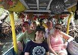 Roatan Ultimate Nature Combo: Mangrove Cruise, Horseback Riding, Beach & Snorkel, Roatan, HONDURAS