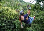 Zipline Suspension Bridges and Hiking Adventure, Roatan, Honduras