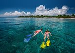 Half-Day Cozumel Snorkeling and Dune Buggy Tour with Punta Sur & Tequila Museum, Cozumel, Mexico