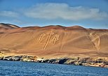 San Martin Port to Ballestas Islands and Paracas Reserve Tour. Paracas, PERU