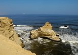 Half-Day Tour of Paracas National Reserve from San Martin Port. Paracas, PERU