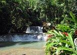 Visita turística privada a la costa sur jamaicana con transporte. Negril, JAMAICA
