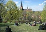 Swedish Lifestyle and Private Walking Tour of Uppsala. Uppsala, Sweden