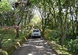 Recorrido privado de 8 horas en vehículo 4x4 desde Ponta Delgada. Ponta Delgada, PORTUGAL