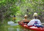 Excursión ecológica en kayak por los manglares en Cayo Hueso. Cayo Hueso, FL, ESTADOS UNIDOS