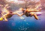 Tour de buceo de superficie en la isla de Catalina de un día completo desde Punta Cana, Punta de Cana, REPUBLICA DOMINICANA