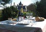 Pícnic en los viñedos, una exclusiva experiencia vinícola en el valle del Loira. Chinon, FRANCIA