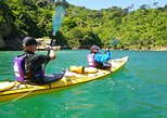 Full-Day Guided Sea Kayak Trip from Picton, Picton, NOVA ZELÂNDIA