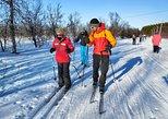 Cross-Country Ski Lesson for Beginners in Tromso, Tromso, NORUEGA