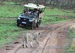 Safaris con 3 días de alojamiento en Ivory Tree Game Lodge - Parque Nacional Pilanesberg,