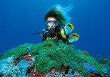 Curso PADI Descubra el submarinismo en Montego Bay,