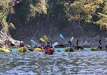 Manuel Antonio Sea Kayak And Snorkel, Quepos, COSTA RICA