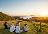 Waiheke Island Wine and Scenery Tour with Wine Tastings. Isla Waiheke, New Zealand