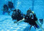 PADI Open Water Course. Gold Coast, AUSTRALIA