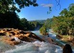 Agua Azul Waterfalls and Palenque Tour from San Cristobal. San Cristobal de Las Casas, Mexico