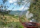 Degustação de vinhos e vinícola Greve Chianti com lanches leves. Chianti, Itália