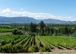 Okanagan Valley, Kelowna Lakeshore Wine-Tasting Tour. Kelowna y Okanagan Valley, CANADA