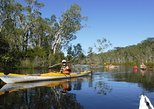 Self-Guided Noosa Everglades Kayak Tour. Noosa y Sunshine Coast, AUSTRALIA
