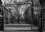 Visita guiada al Museo y al monumento conmemorativo de Auschwitz-Birkenau desde Cracovia. Cracovia, POLONIA