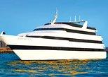 Crucero con almuerzo Odyssey por Chicago,