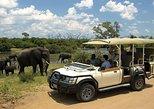 Chobe day trip from Livingstone (Zambia). Livingstone, Zimbabwe