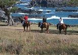 Excursão com Passeio a Cavalo em Maui. Maui, HI, ESTADOS UNIDOS