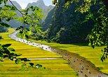 Excursión de un día por los templos de Hoa Lu y paseo en junco y bicicleta por Tam Coc desde Hanói.,