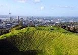 Excursão de meio Discover Auckland City. Auckland, NOVA ZELÂNDIA