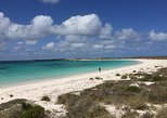 Abrolhos Island Half Day Fly and Flipper. Geraldton, AUSTRALIA
