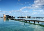 Full Day Guided Abrolhos Fly and Flipper Tour from Geraldton. Geraldton, AUSTRALIA