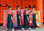 Kyoto Full-Day Small-Group Tour with Geisha District, Temples. Kioto, JAPAN