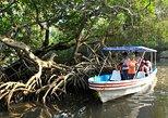 Mandinga And Boat Trip Tour, Veracruz, MEXICO