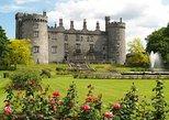 Kilkenny City, Wicklow Park y Glendalough desde Dublín. Dublin, IRLANDA