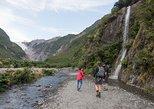 Franz Josef Glacier Valley Eco Tour. Glaciares Franz Josef y Fox, New Zealand