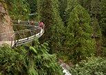Passeio na Grouse Mountain e Ponte Suspensa de Capilano. Vancouver, CANADÁ