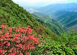 Private Tour: Yao Mountain and Tea Plantation from Guilin, Guilin, CHINA