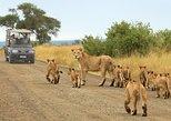 2 días en Johannesburgo y Museo del Apartheid Pretoria y 3 días en el Parque Nacional Kruger,