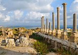 Private Tour: Tyre, Sidon and Maghdouche Day Trip from Beirut, Beirut, Lebanon