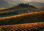 Recorrido de senderismo en la Toscana desde Siena con cata de vinos. Siena, ITALIA