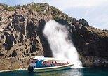 Full-Day Bruny Island Cruises Day Tour from Hobart, Hobart, AUSTRALIA
