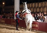 Jerez, Cadiz Tour da Costa Del Sol: Vinho, Horse Show, Cruise. Malaga, Espanha