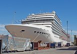 Private Transfer Hotel to Buenos Aires Cruise Terminal - One Way or Round Trip, Buenos Aires, ARGENTINA