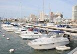 Punta del Este City Sightseeing Tour,