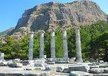 Priene, Miletus, and Didyma Day Tour from Kusadasi. Kusadasi, Turkey