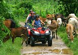Punta Cana Half-Day Tour: ATV, Waterfall, Dominican Culture,